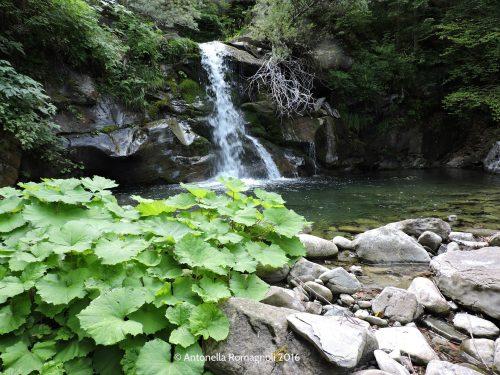 Le cascate del Rio Valdarno