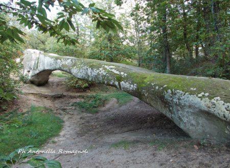 Ponte Ercole