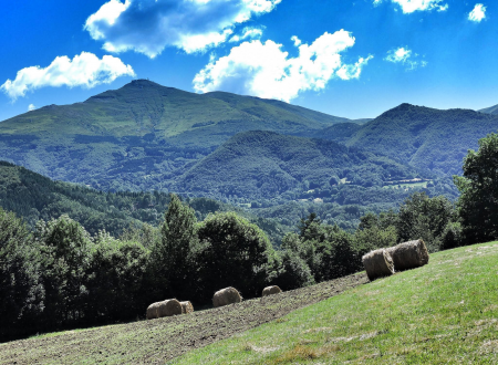 Il Monte Cimonedi Mirto Campi